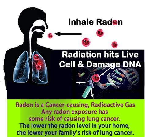 indoor radiation environmental radiation radon is a