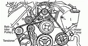 Alternator Belt Diagram Image Free