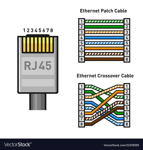 Usb To Lan Wiring Diagram by Ethernet Connector Pinout Color Code And Vector Image