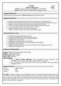 Resume Format For Experience In Manual Testing