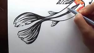 Drawn koi easy - Pencil and in color drawn koi easy
