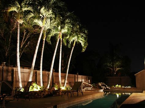 outdoor solar lights for trees home landscapings
