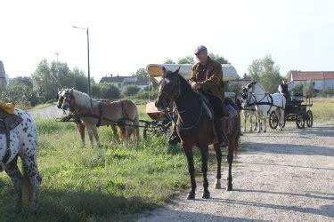 carrozza maratona cavarzereinfiera it le carrozze ranch fanno