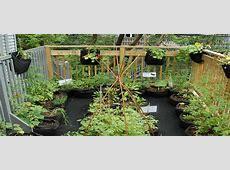 Smart Pot Grow Healthy Plants with Smart Pots Award