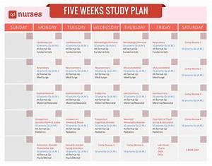 Five Weeks Study Plan  U2026