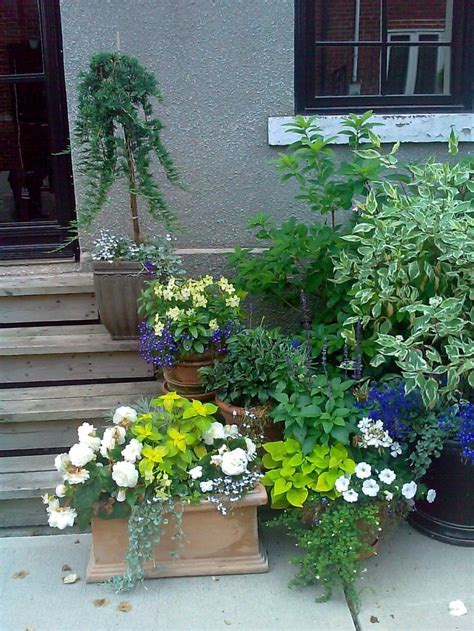 Front Porch Container Gardening Ideas