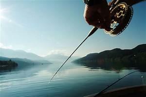 Bilder Mit Fischen : angeln fischen und fliegenfischen in k rnten ~ Frokenaadalensverden.com Haus und Dekorationen