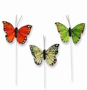 Deko Schmetterlinge Groß : deko schmetterlinge am draht 8cm gro handel und lagerverkauf ~ Yasmunasinghe.com Haus und Dekorationen