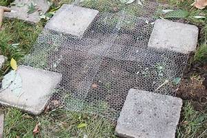 Betonoptik Boden Selber Machen : hochbeet bauen anleitung zum selber bauen plantura ~ Michelbontemps.com Haus und Dekorationen