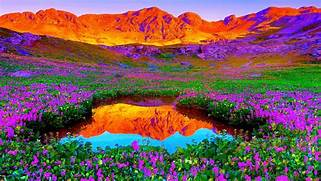 Beautiful nature backg...