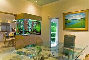 Modern Fish Tank Decor Pictures
