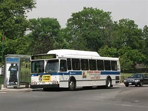 File:MTA New York City Bus Orion V CNG 9831.jpg ...