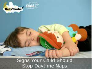 Signs Your Child Should Stop Daytime Naps – BabyWinkz