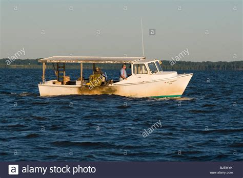 Chesapeake Bay Crab Boat by Chesapeake Bay Crab Boat Hauling Traps In The Northern