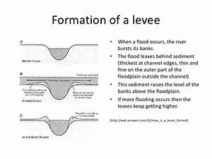 Levees