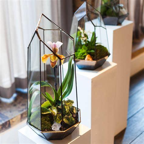 terrarium design terrarium design school experience for one by the indytute experiences notonthehighstreet com