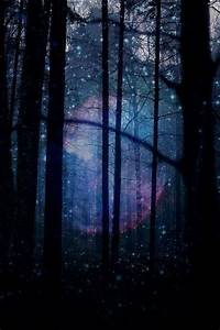 Magical forest | Favorite Places & Spaces | Pinterest