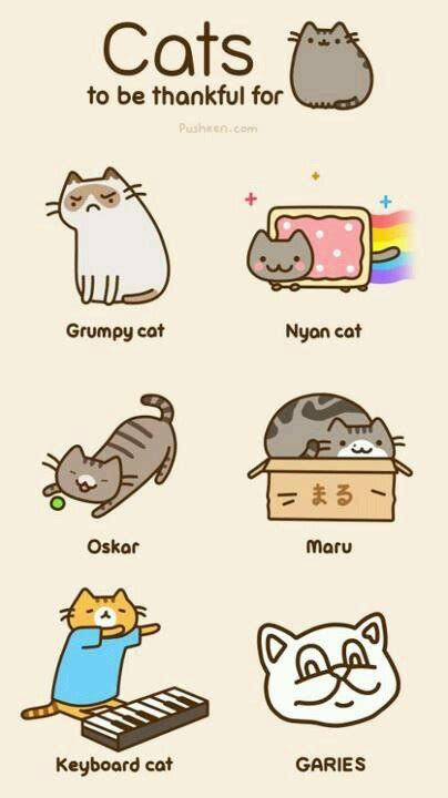 Pusheen Memes - 24 best images about pusheen on pinterest food meme pizza and costume ideas
