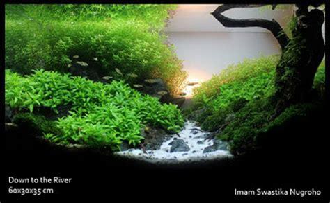 aquascape indonesia aquatic indonesia aquascaping contest photo contest