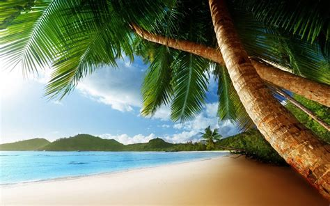island background island backgrounds pictures wallpaper cave