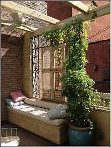 Pflanzen Sichtschutz Balkon : pflanzen als sichtschutz fr balkon balkon house und dekor galerie qnarmxqgxm ~ Eleganceandgraceweddings.com Haus und Dekorationen