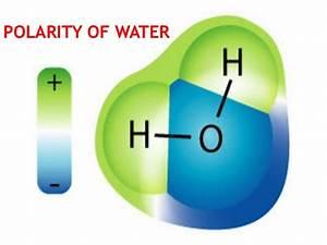 polarity of water - Pertamini.co