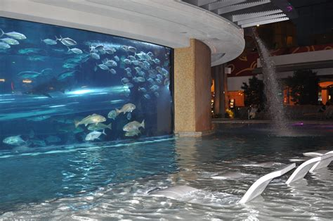 Top 20 Las Vegas Resort Pools (part 1
