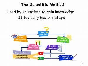 Scientific Method 7 Steps In Order | www.pixshark.com ...