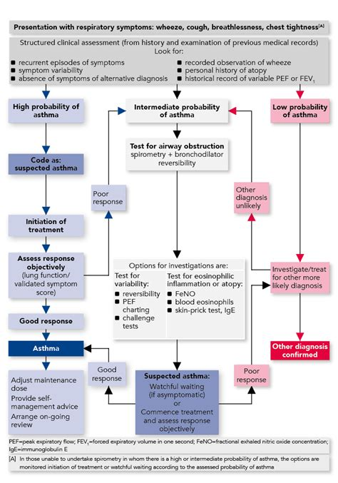 sign  bts management  asthma  adults guideline