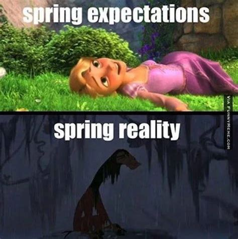 27 Funny Memes About Spring Barnorama