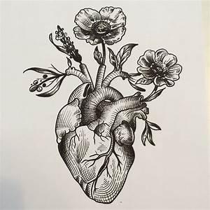 anatomical heart woodcut - Google Search | Creative ...