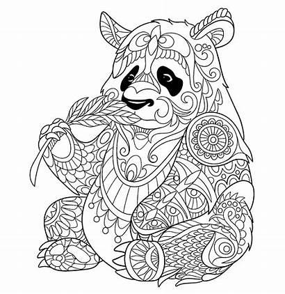 Coloring Pages Pandas Children Justcolor