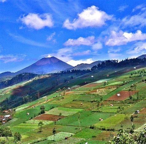 travelingyukcom agrowisata kaligua tempat ngadem  brebes