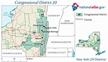2009 New York's 20th congressional district special ...