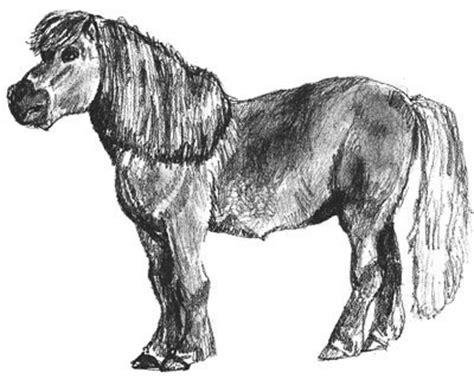 draw  pony step  step drawings  kids