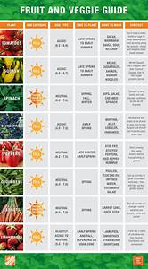 Sow Chart The Home Depot Eat What You Sow Bfs Fruit And Veggie Guide