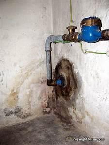 Wasser Im Keller Bei Starkem Regen : wasser der baumvogel blog ~ Yasmunasinghe.com Haus und Dekorationen