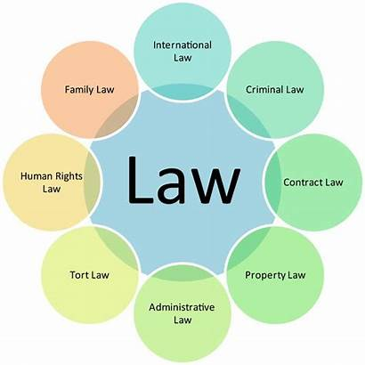 Law Practice Areas Lawyer Decide Different Lawyers