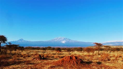 kereta gantung  gunung kilimanjaro dianggap mengganggu