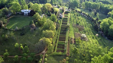 thomas jeffersons vegetable garden    beauty