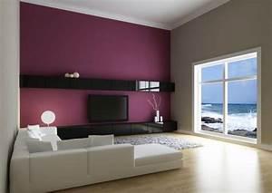 peinture a la chaux enduit a la chaux les plus belles With idee peinture salon design