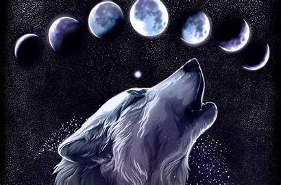 Wolf Galaxy Background Wallpapers Backgrounds Wallpaperaccess