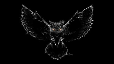 Black Owl Wallpapers by Wallpaper Nightmare Owl Black Scary Hd Creative