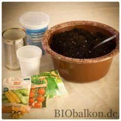 Gartenarbeit Im Februar : auch wenn es in februar und m rz noch zu kalt auf dem balkon ist um erste pflanzen zu s en ~ Frokenaadalensverden.com Haus und Dekorationen