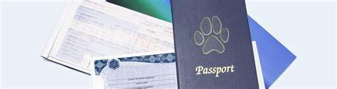 Документы необходимые для снятия регистрации в г москва