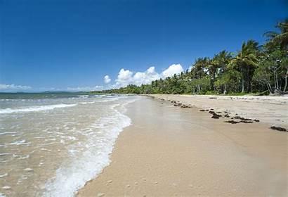 Sandy Beach Tropical Golden Clean Sands Photoeverywhere