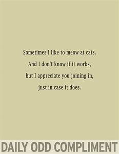 79 best daily odd compliments. ♡ images on Pinterest ...