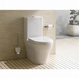 Cuvette Wc Bois : abattant cuvette wc best abattant wc bricoman avec wc ~ Premium-room.com Idées de Décoration