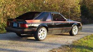 1980 Ford Mustang Cobra for sale: photos, technical specifications, description