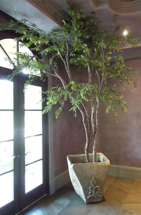 large artificial trees like specimen make be leaves